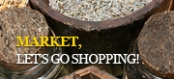 Market, let's go shopping!